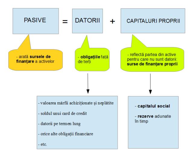 Structura pasivelor
